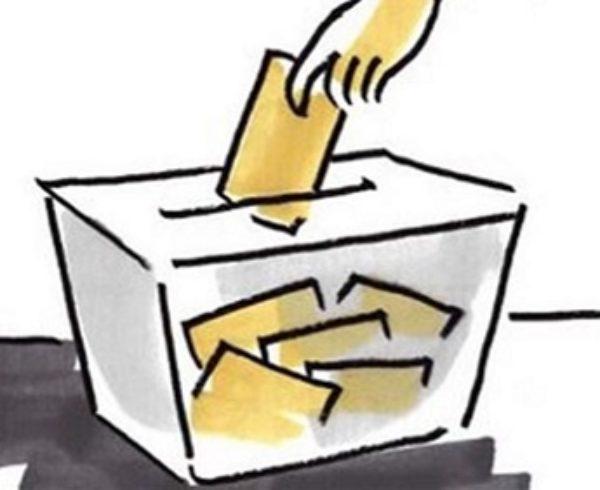 Elecciones a la Junta Directiva de la AMPA Ceipso El Cantizal